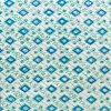 Block Print Salwar Kameez (White & Blue)